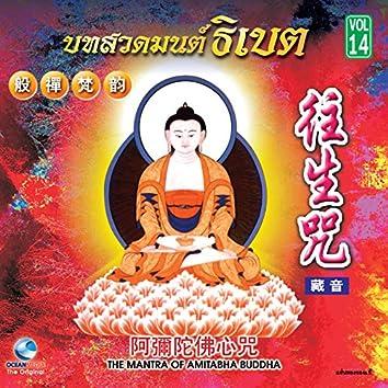ธิเบตชุด, Vol. 14: The Mantra of Amitabha Buddha