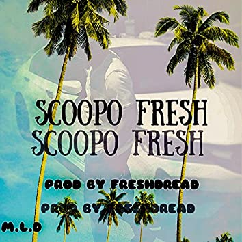 Scoopo Fresh