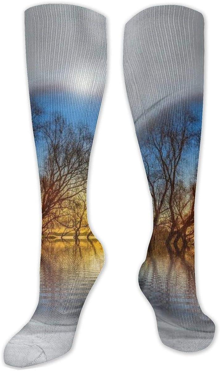 Mallard Bulb Background Knee High Socks Leg Warmer Dresses Long Boot Stockings For Womens Cosplay Daily Wear