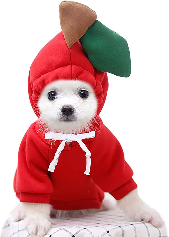 KVV Dog Hoodie-Dog Discount mail order Basic Sweater Coat Warm Jacke Shape Las Vegas Mall Frog Cute