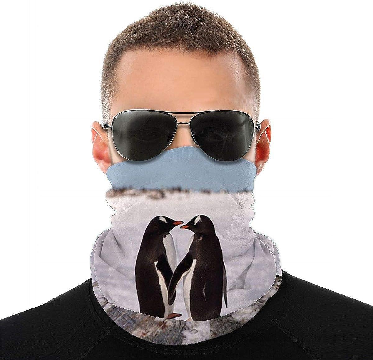KiuLoam Stylish Lover Penguins in Winter Seamless Face Mask Bandanas Neck Gaiter for Men and Women, Multifunction Headband Scarf for Dust, Outdoors, Sports
