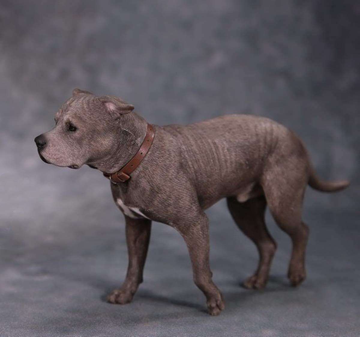 Mr.Z 1//6 American Staffordshire Terrier Dog Pet Figure Animal Sitting Model Toys