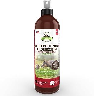 Chlorhexidine Spray for Dogs, Cats - Ketoconazole, Aloe - 8 oz - Cat, Dog Hot Spot Treatment, Mange, Ringworm, Yeast Infec...