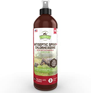 Chlorhexidine Spray for Dogs, Cats - Ketoconazole, Aloe - 8 oz - Cat, Dog Hot Spot Treatment, Mange, Ringworm, Yeast Infection, Itching Skin Relief, Allergy Itch, Acne, Antibacterial Antifungal, USA