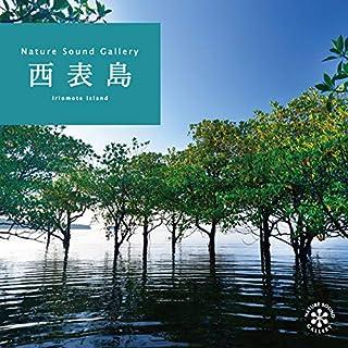 西表島 ヒーリング CD BGM 音楽 癒し ミュージック 沖縄 海 せせらぎ 小川 水 森 滝 鳥 波の音 自然音 リラックス ギフト プレゼント