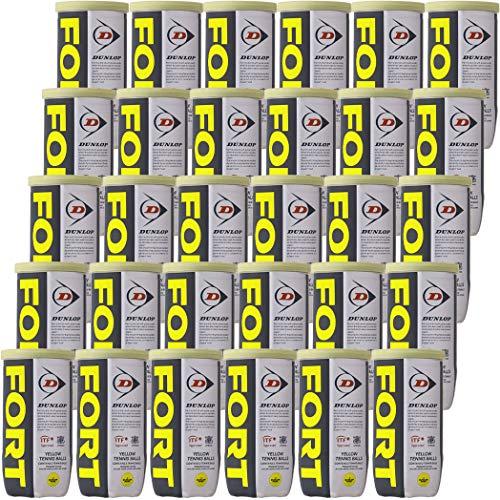 フォート 2ヶ入 30缶