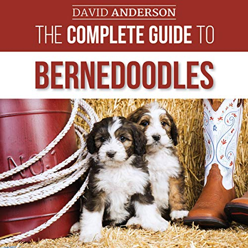 The Complete Guide to Bernedoodles  By  cover art