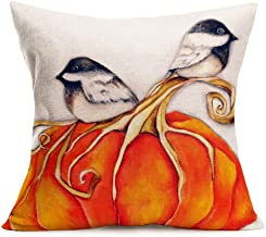 Smilyard Fall Throw Pillow Covers Yellow Pumpkin with Lovely Bird Watercolor Throw Pillow Cover Decorative Home Sofa Animal Plant Cotton Linen Pillow Case Cushion Cover 18x18 Inch (Pumpkin-Bird)