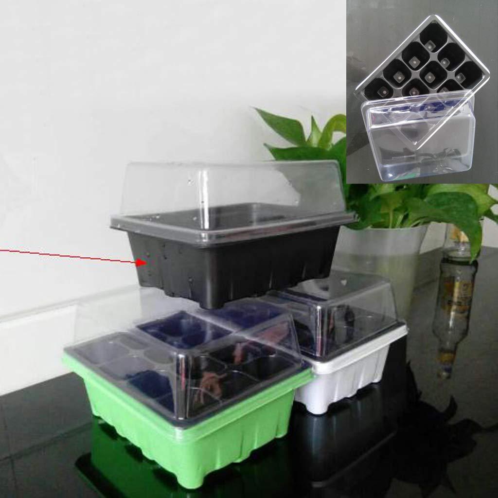 ruiruiNIE Útil Durable 12 células Sembradora de Semillas Semillas de Cultivo Caja de siembra Caja de clonación Herramientas de jardín: Amazon.es: Hogar