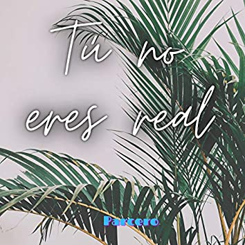 Tú no eres real