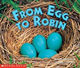 From Egg to Robin