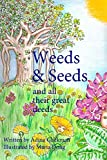 Weed Seeds Review and Comparison