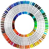 Pen48/60/80/100 colori da disegno a acquerello, penna a doppia testa colorata penna fine Liner arte scolastica colori pennarelli permanenti (dimensioni: unica; colore: 24 colori)
