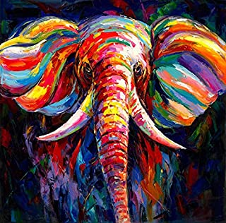gold mi Black and White Background Colorful Elephant Head Painting Canvas Printed Animal Wall Art Picture for Family Room Courtyard Wall Decor Home Decorations Frame (Black, 20x20inch)