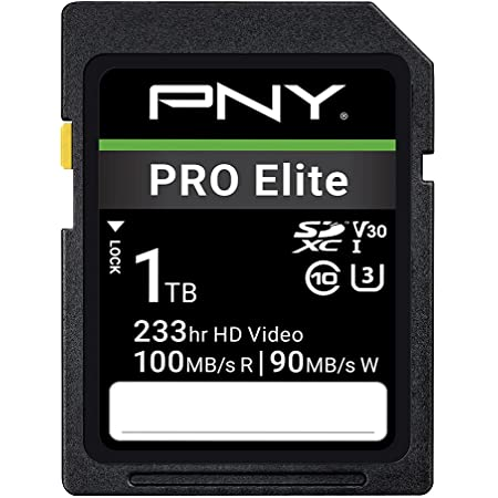 256GB Promotional LARTOVASsd Memory SD Card 256GB UHS-I U3 Class 10 SDXC Memory Card Speed up to Max 120MB//S Compatible with Computer,Cameras,etc.