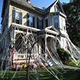 CHICIEVE Halloween Spider Webs Stretchable Spider Webs Halloween Decorations Spider Webs,Enough to cover 1000 Square Feet (300g Spider Web)