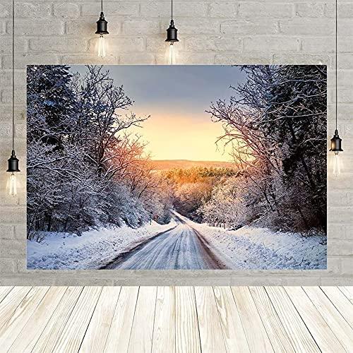 Fondo de fotografía de Invierno Navidad Selva Nieve Camino Amanecer Retrato de bebé telón de Fondo fotófono Decoraciones Vinyl-250x180cm