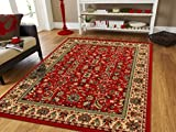 Large Persian Rugs for Living Room 8x11 Red Green Beige Cream Area Rugs 8x10 Clearance