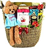 Gift Basket Village Hang In There, Get Well Basket Hang In There - Get Well Basket With Plush Recovery Buddy & Comfort Snacks To Lift Their Spirits While They Recover, 8 Lb