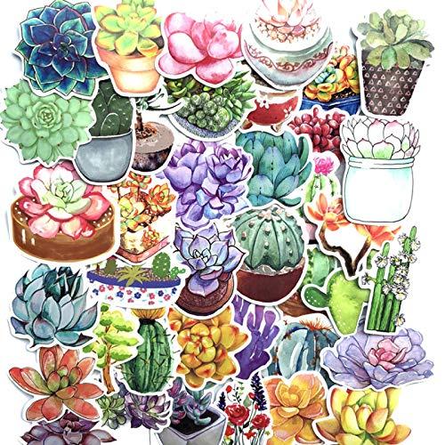 YMSD [71 unids/paquete] Plantas suculentas plantas en maceta pegatinas cactus PVC Cool impermeable graffiti calcomanías, pegatinas para niñas VSCO, lindas pegatinas para regalos de niños