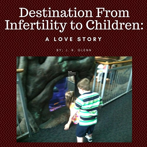 Destination from Infertility to Children audiobook cover art