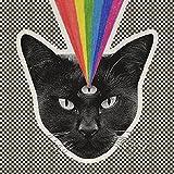Black Cat von Never Shout Never