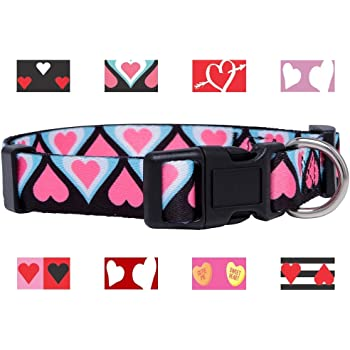 Native Pup Valentines Day Heart Dog Collar Small, Pink Heart