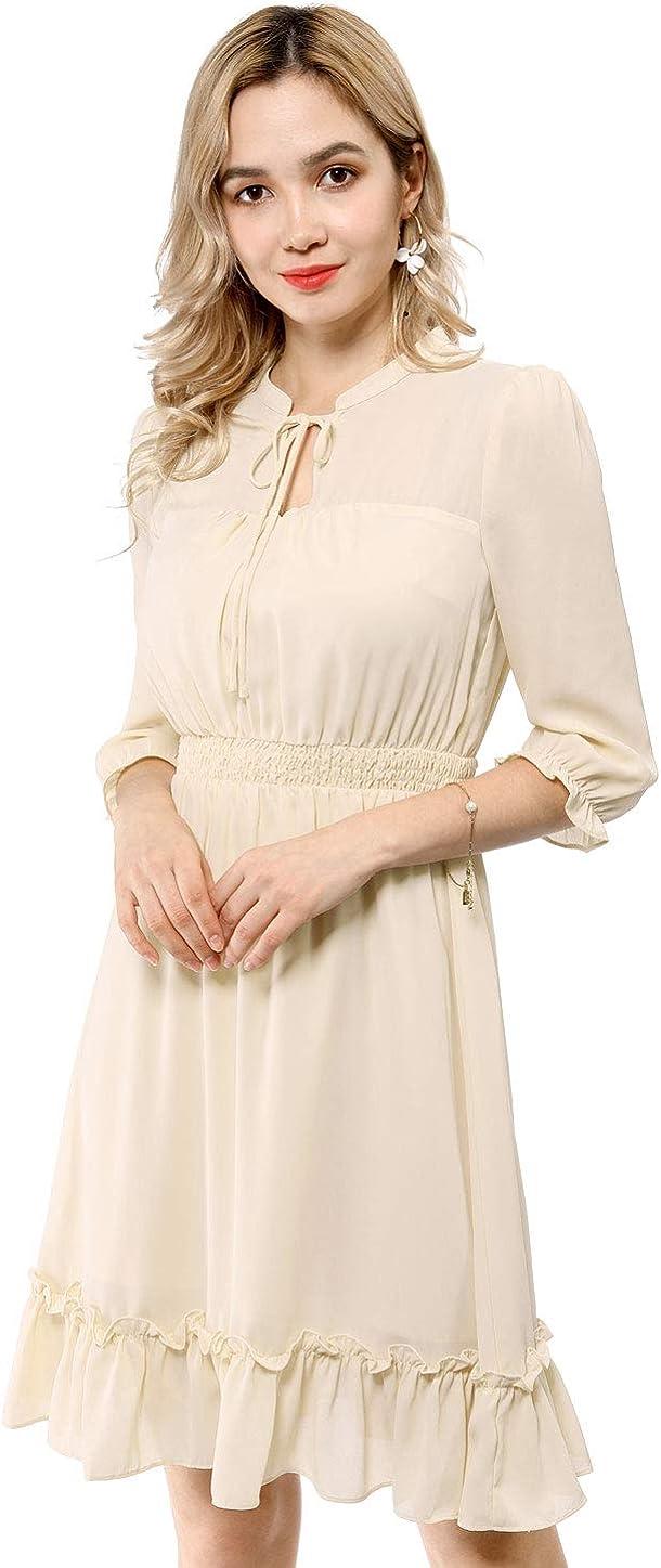 Allegra K Women's Ruffle Hem 3/4 Sleeve A-Line Smocked Short Chiffon Dress