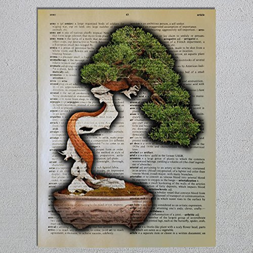 Bonsai Tree Dictionary Page Art Print