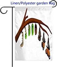RLDSESS Double Sided Festival Garden Flag Set of Butterfly Life Cycle Multicolor Welcome Decorative Garden Flags-Weather Resistant-Double Stitched-Linen 12x18 inch