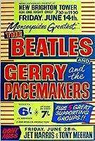 Beatles Concert カブトムシ メタルサインメタルポスターポストカード注意看板装飾壁掛壁パネルカフェバーレストランシネマボールルームミュージックフェスティバル