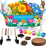 Little Planters Paint & Grow Fairy Garden with Real Flowers and Magical Fairies - Paint, Plant and Grow Morning Glory, Marigold and Alyssum Flowers - Craft Kit for Kids All Ages Both Girls and Boys