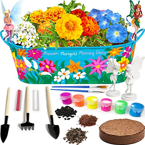 Little Planters Paint & Grow Fairy Garden with Real Flowers...