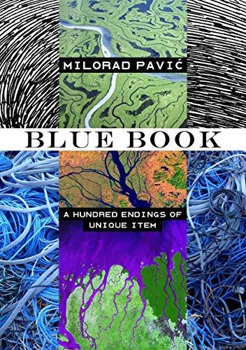 Blue Book (Unique Item 2) (English Edition)
