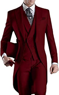 DGMJ Mens Suits Slim Fit 3 Piece Formal Wedding Attire Tuxedo Mens Retro Tailcoats Outfit for Party XZ019