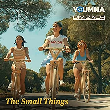 The Small Things (feat. Dim Zach)