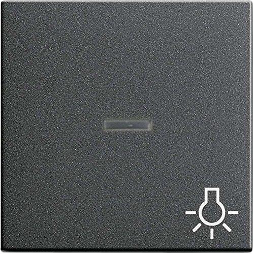 Gira Wippe 067428 Kontroll Sym Licht System 55 ant