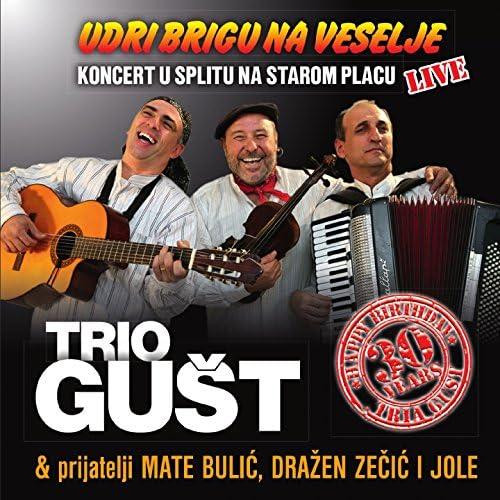 Trio Gust