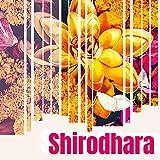 Shirodhara: Relaxing Ayurveda Meditation Music to Restore Inner Calm to the Mind