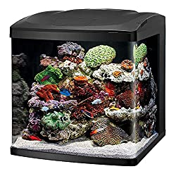 Coralife Fish Tank LED BioCube Aquarium Starter Kits, Size 32