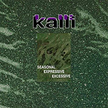 Seasonal Expressive Excessive