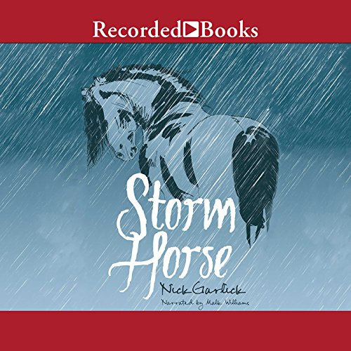 Storm Horse audiobook cover art
