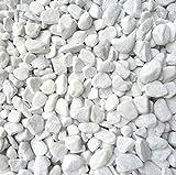 Xabian 1 kg Dekosteine weiß 7-15 mm - 2