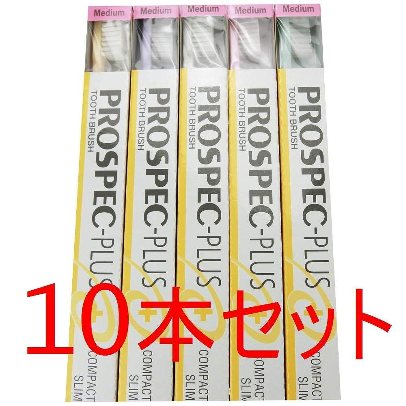 上に絶対にラッチGC プロスペック 歯ブラシプラス コンパクトスリム M (10本セット)