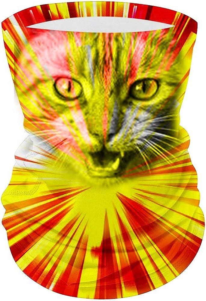 Women Men Outdoor Wide Wicking Magic Bandana Windproof Dustproof Seamless Animal Pattern Angry Cat Headband