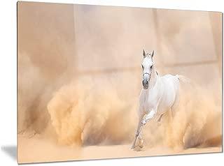 Designart Arabian Horse in Desert Storm-Photography Metal Wall Art-MT6469-40x30, 40x30