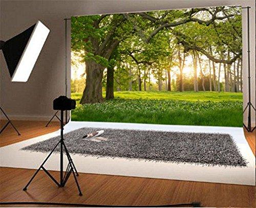 YongFoto 3x2m Vinilo Fondos Fotograficos Naturaleza Paisaje Forest Green Grass...
