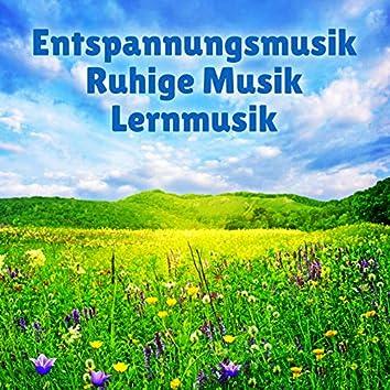 Entspannungsmusik - Ruhige Musik - Lernmusik