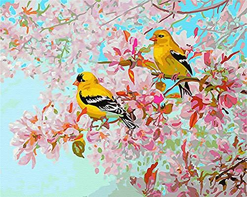 Komking - Pintura de números para principiantes de adultos, kit de pintura por número sobre lienzo, 40,6 x 50,8 cm, hermoso patrón de flores y pájaros