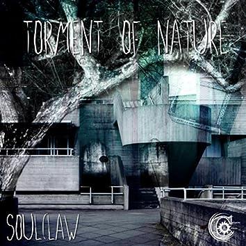Torment Of Nature
